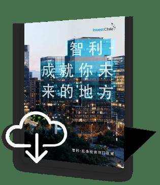 brochure-chino-icono-1
