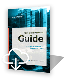 investors-guide-ENG-icono-3