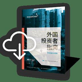 investors-guide-eng-icono-1