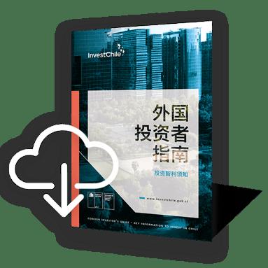 investors-guide-eng-icono-2