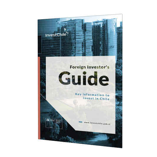 investors-guide-eng-icono.png