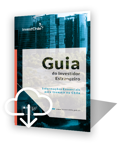 investors-guide-portugues-icono