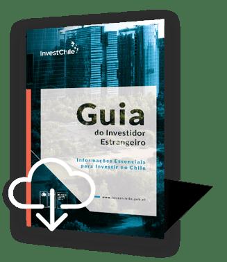 investors-guide-portugues-icono